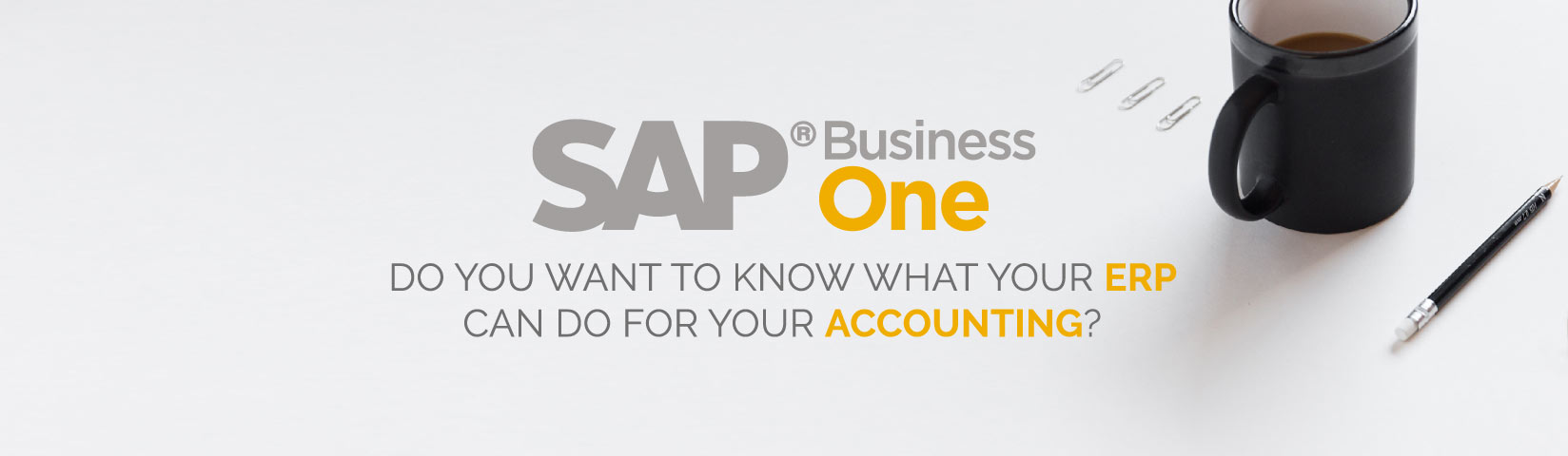 AGENTIL Training Tuesday SAP Business One Accounting