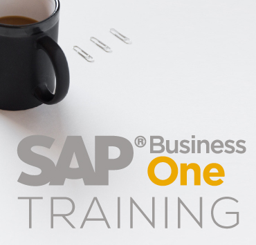 Control and optimize your supply and logistics processes with SAP Business One